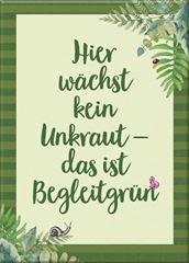 Bild von Blatt & Blüte Magnet Begleitgrün , VE-3
